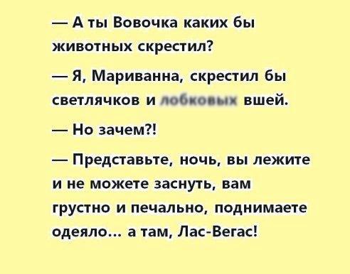 Пикантный анекдот про Вовочку