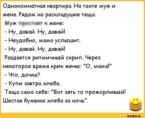 Анекдот про диалог в однокомнатной квартире